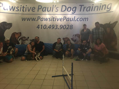 Santa Claus visiting dogs at Pawsitive Paul Dog Training in Baltimore, MD